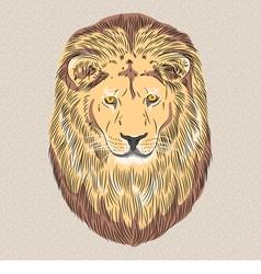 serious wild big cat lion vector image