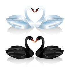 Set of white and black swans vector