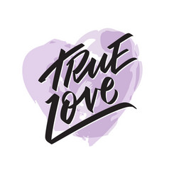 true love writing - valentine lettering text vector image