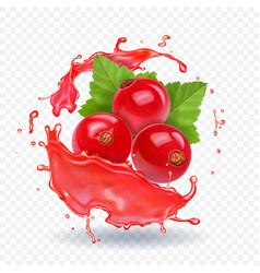 Red currant in realistic juice splash vector