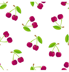 seamless pattern with cherry vector image vector image