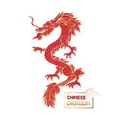 Chinese red dragon vector