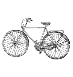hand drawing bike vector image