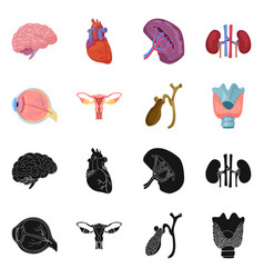 isolated object of body and human symbol set of vector image