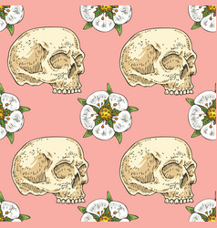 seamless pattern with skull and white flower vector image