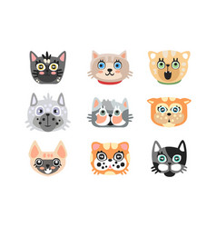 Set of cute cartoon cats heads colorful character vector