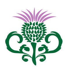 Thistle with decorative leaves isolated vector