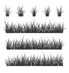 grass set on white background vector image vector image