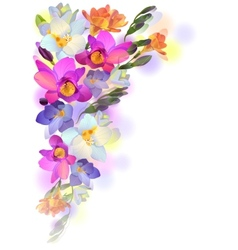 Spring card with gentle freesia flowers vector image vector image