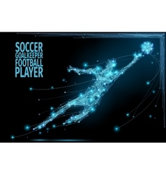 Goalkeeper poly soccer vector image vector image