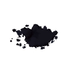 ink stain vector image