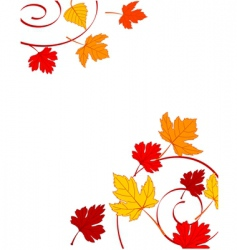 Autumn ornament vector