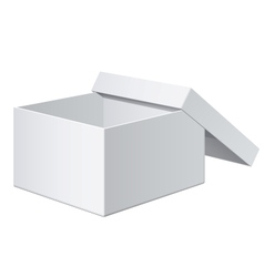 Cool Realistic White blank Package Box Opened For vector image