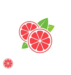 Grapefruit Abstract fruit on white background vector