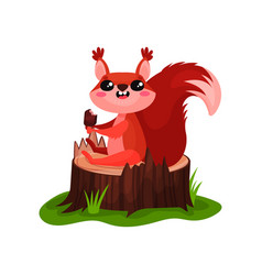 Happy red squirrel sitting on tree stump and vector