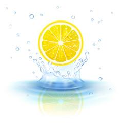 lemon in water vector image