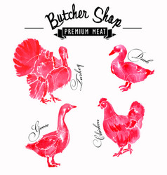 meat symbols set chicken duck goose turkey vector image