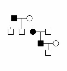 simple family diagram vector image