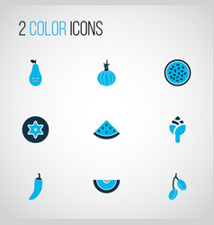 vegetable icons colored set with barberry pear vector image