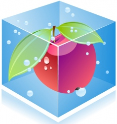 Apple inside ice cube vector