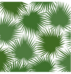 green silhouette of leaf libistones of chinese vector image