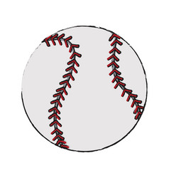 Sports equipment design vector