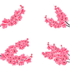 set of flowering realistic branches with a pink vector image vector image