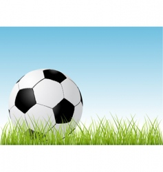 soccer ball and grass vector image vector image