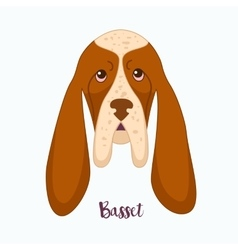 dog Basset vector image vector image