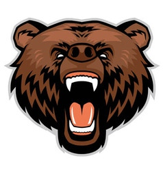 Angry brown bear head vector