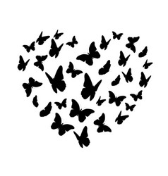 beautiful butterfly heart silhouette isolated vector image