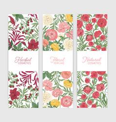bundle of vertical floral banner templates vector image