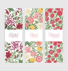 bundle vertical floral banner templates vector image
