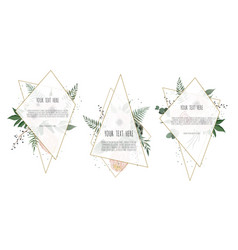 Card with leaves flowers and geometrical frame vector