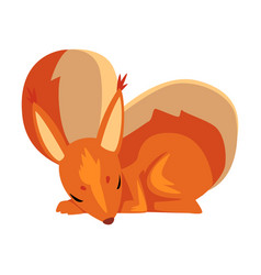 cute sleeping squirrel lovely little rodent vector image