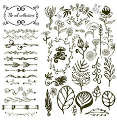 Hand-drawn floral big set with wild flowers vector