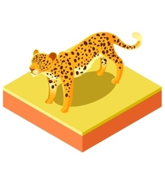 Isometric leopard on a square ground vector image