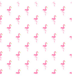 pattern with flamingo bird on white background vector image