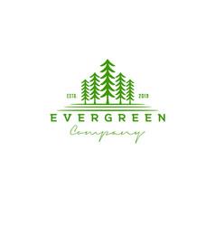 Pine evergreen cedar hemlock green spruce tree for vector