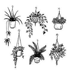 Set of potted house plants sketch vector