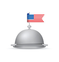 usa flag dinner platter vector image