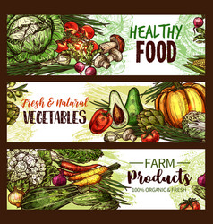 Vegetable fruit mushroom banner of fresh veggies vector