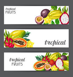 banners with exotic tropical fruits vector image