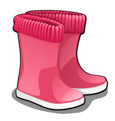 Stylish pink rubber boots or wellingtons isolated vector