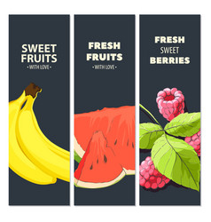 bright fruit cards vector image vector image