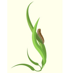funky caterpillar vector image vector image