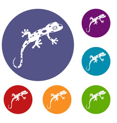 chameleon icons set vector image vector image