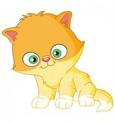Persian kitten vector image vector image