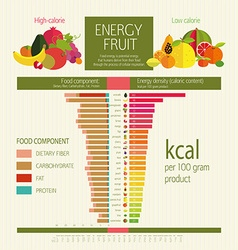 Basics dietary nutrition vector image