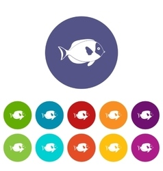 Fish set icons vector